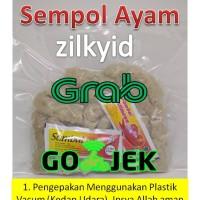 Sempol Ayam Zilky Sehat Cemilan Snack Makanan Jajanan Kekinian Malang
