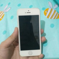 Iphone 5 / hp second minus simcard tidak terbaca