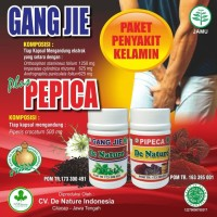 Obat Kecing Nanah Infeksi Saluran Kemih De Nature Gang Jhi Dan Pipeca