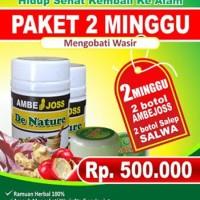 Obat Wasir Ambeien Ambeyen Stadium 1-2-3 De Nature Paket 2 Minggu