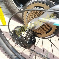 Special Edition Sepeda Mtb Thrill Oust 2