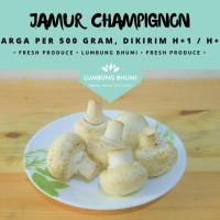 Jamur Champignon / Kancing ( Sayur - Sayuran Curah )
