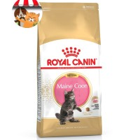 Royal Canin Kitten Maine Coon 36 - 2kg - Makanan Anak Kucing