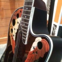 Harga gitar akustik elektrik   WIKIPRICE INDONESIA
