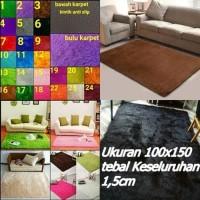 Karpet Bulu Lantai Permadani Minimalis Bulu Rasfur Halus 100x150x1.5CM