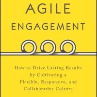 Agile Engagement : How to Drive Lasting Results (BUKU CETAK)