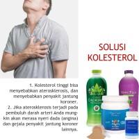 AMPUH! Obati Kolesterol Chlorophyll Maximum Protein Colostrum NoniPlus