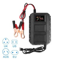 Charger Cas Casan Aki/Accu Mobil Motor truk Led Display Smart 12V/20A