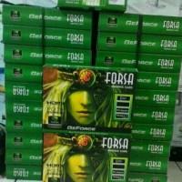 VGA CARD FORSA GT730 4GB 128BIT DDR3 GARANSI 1TAHUN
