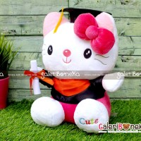 Boneka Wisuda Hello Kitty ( HK - 601642 )