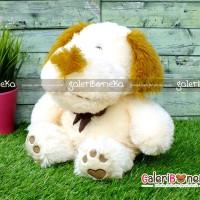 Boneka Anjing Pita Cream ( HK - 607530 )