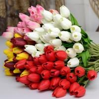 Harga 1 Buket Bunga Tulip DaftarHarga.Pw