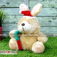 Boneka Kelinci Topi Santa ( HK - 605130 )