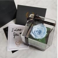 Maxime Le Mini Preserved Flower (Everlasting Rose) Baby Blue