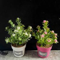 Jual Bunga Plastik   Artificial Terbaru   Unik - Harga Grosir Murah ... 027c0e8342