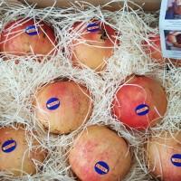 Buah Segar Delima Merah Red Pomegranate Fresh Import Per Dus