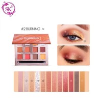 FOCALLURE FA50 BURNING Eyeshadow Palette 12 Colors
