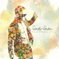 CD Sandhy Sondoro - Vulnerability