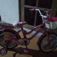 menjual berbagai merek sepeda secara online sepeda anak merk polygon