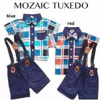 Setelan Baju Celana Balita Cowok Newborn IMUT Obral Murah - BBL053