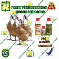 Vitamin Penggemuk Ternak Bebek | Paket Vitamin Ternak Nasa