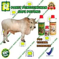 Paket Vitamin Ternak Penggemukan Sapi Potong / Organik Nasa