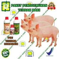 Vitamin Ternak Penggemukan Ternak Babi | Vitamin Ternak Nasa