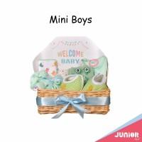 Mini Boys Hampers