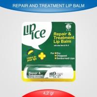 Lip Ice Repair and Treatment Lip balm 4.2 gr