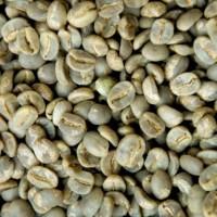 Green Beans Kopi Brazil Santos (1 Kg) Specialty Grade