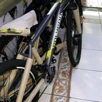 Sepeda Gunung Monarch 4 Polygon