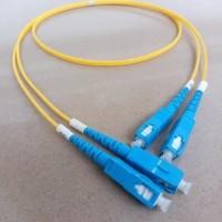 1m Patchcord SC Upc Fiber Optic Patch Cord SC-SC Upc Duplex