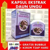 Obat Wasir Alami Kapsul Daun Ungu - Obat Herbal Wasir Ambeien Ambeyen