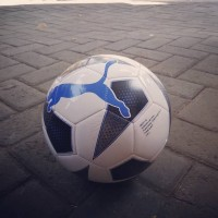 Bola sepak puma big cat