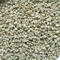 Green Beans Kopi Malabar Natural Jawa Barat (1 Kg) Specialty Grade