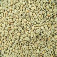 Green Beans Kopi Aceh Gayo (1 kg) Specialty Grade