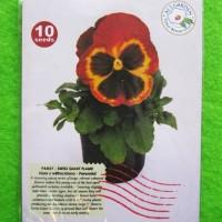 Benih Biji Bunga Pansy Swiss Giant Flame Pack - Als Garden
