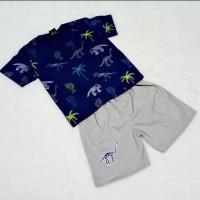 Baju Setelan Anak Laki-Laki Gambar Dinosaurus