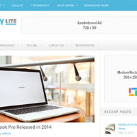 Delivery Lite Wordpress Theme by Theme Junkie