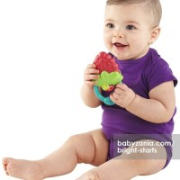 Bright Starts Berry Vibrating Teether T2909