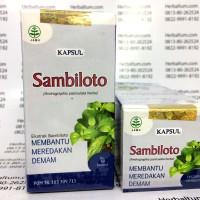 Sambiloto Kapsul - Herbal Radang Paru, Kencing Nanah, TBC, Demam