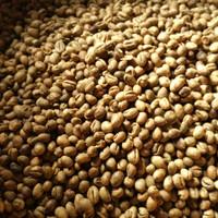 Jual Greenbean Robusta Kopi peaberry/Lanang/Jantan/Laki Lampung per/kg Murah