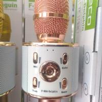Mic Bluetooth Speaker Fleco F804 Dolphin - Penguin SPEAKER MIC KARAOKE