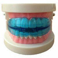 Harga alat perata pelurus merapikan gigi behel karet silikon teeth   Pembandingharga.com