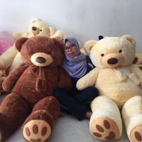 Harga boneka teddy bear 1 5 m | antitipu.com