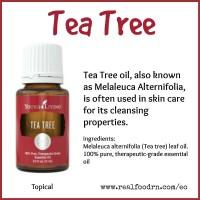 Young Living Essential Oil Melaleuca Alternafolia - 15 ml
