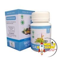 Obat Maag Akut Herbal Kapsul Gastro Hiu