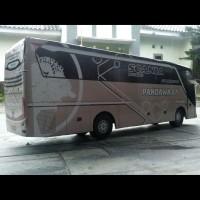 TERLARIS Miniatur Bus Pandawa 87 Premium Class