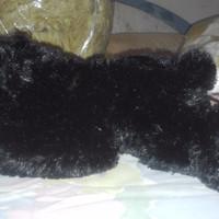 Harga Boneka Beruang Madu Lucu Hargano.com
