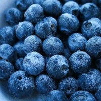 IQF Blueberries/Blueberry/FroZen fruits/frozen blueberries 250gr